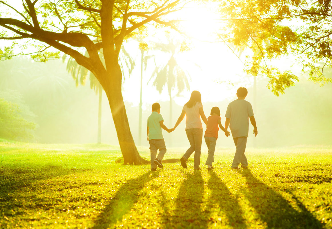 family of 4 holding hands walking through a sunny park with trees