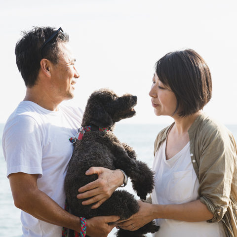 Happy, loving mature couple holding their dog at the beach