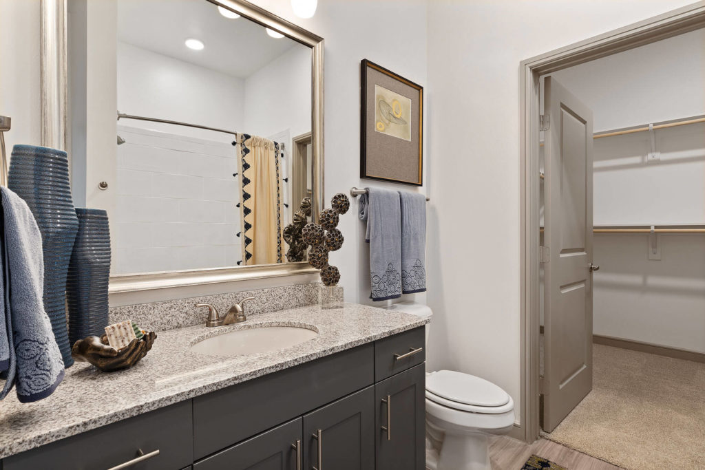 Bathroom with single sink, walk-in closet, and granite like counters